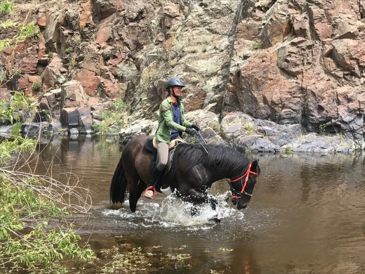 I love having a horse that loves water.